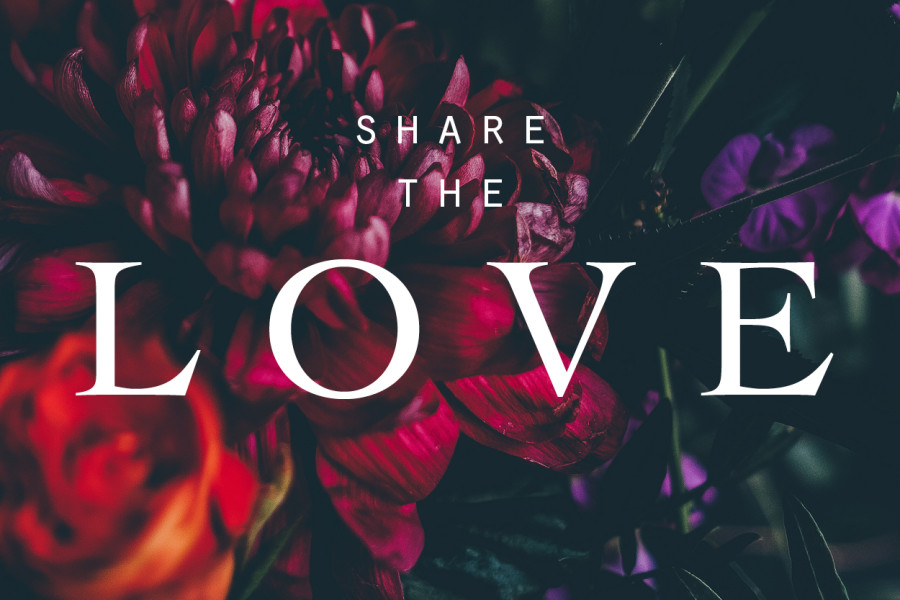 Sfilata sposa : SHARE THE LOVE